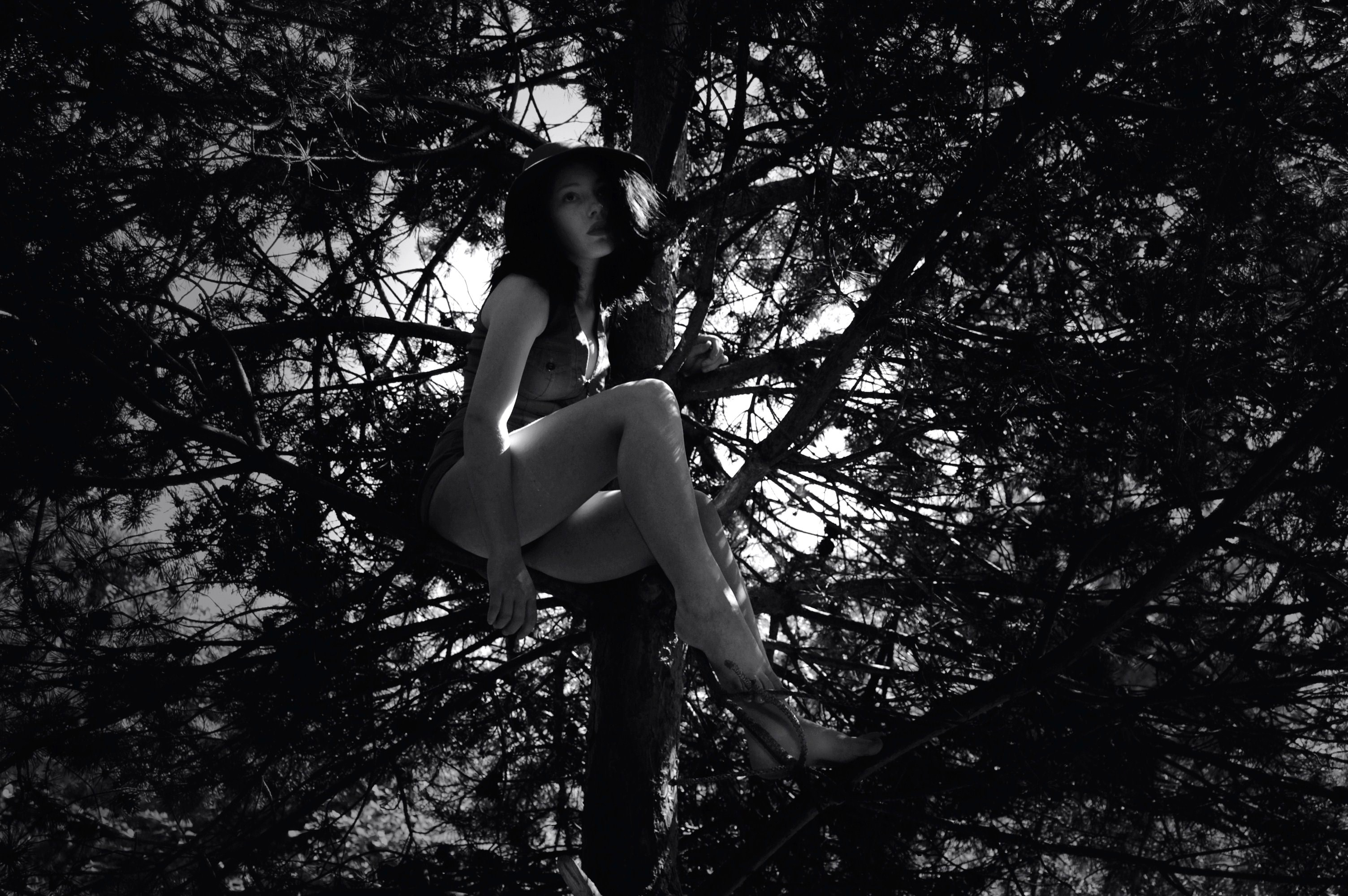 girl-in-a-tree