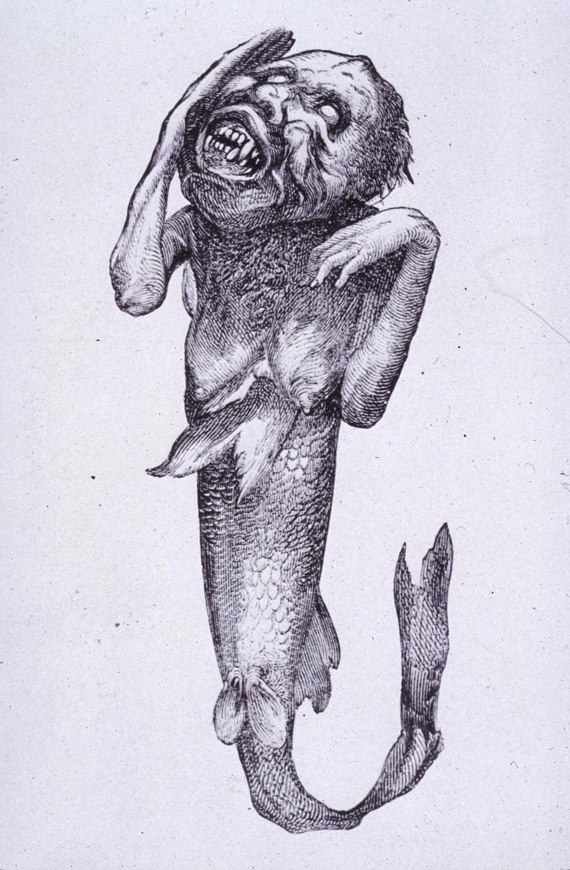 Barnum.fidschi.meerjungfrau